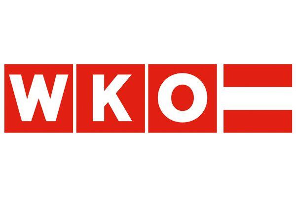 Logo Wko Grunderservice